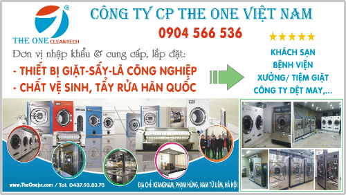 the one việt nam