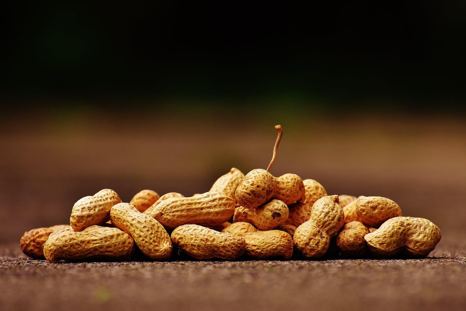 ăn đậu phộng có tác dụng gì