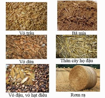 phụ phẩm nông nghiệp